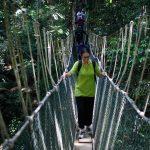 Canopy Walkway – Taman Negara